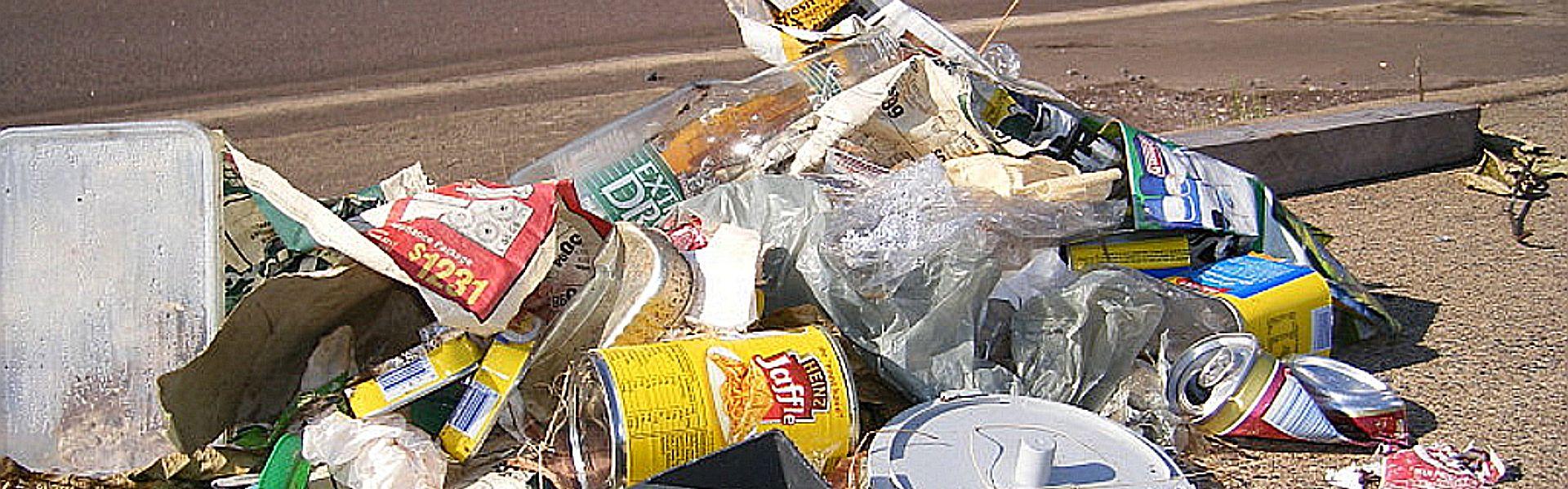 Zwerfafval bij het versje 'Afvalrace' van Paul Schrijft. Foto: davidfntau op Flicr