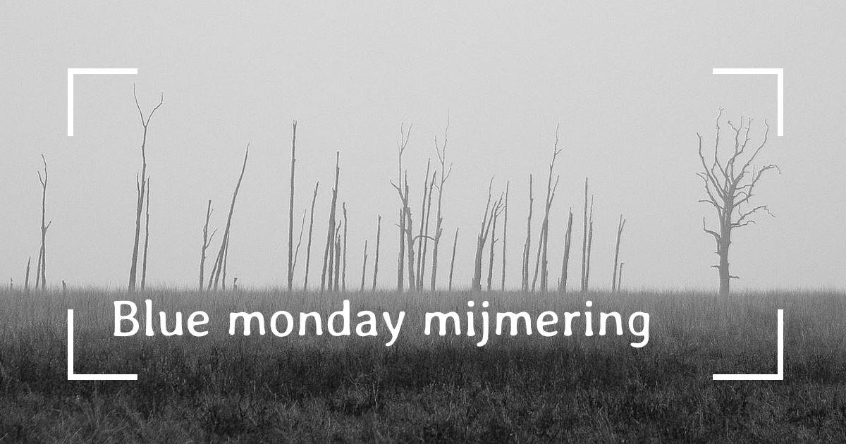 Zwart-wit afbeelding van bomen in een weiland in de mist, passend bij een 'Blue Monday Mijmering'.
