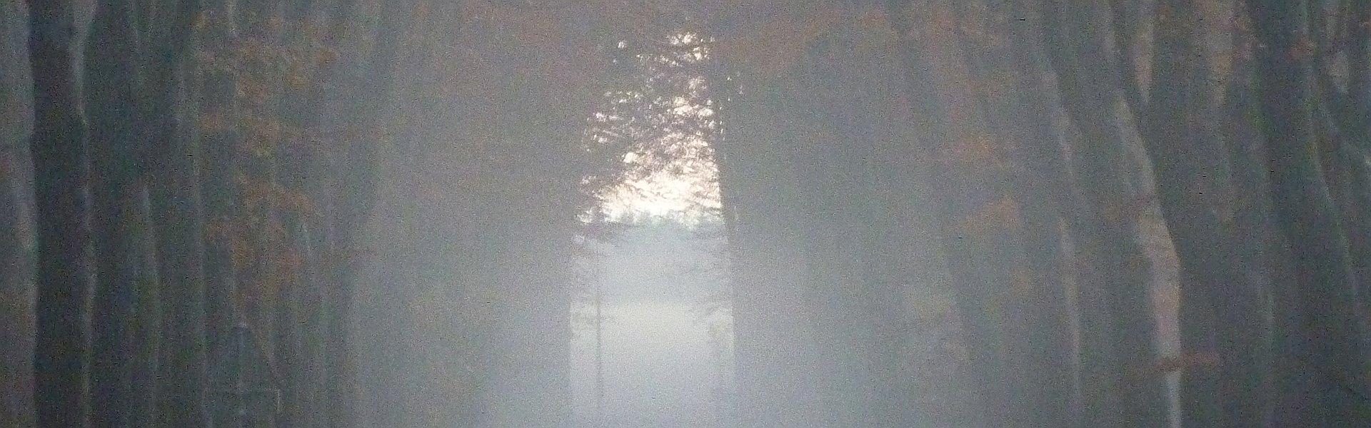 """Een wandelpad in de herfst als kaft van het boek """"KIEUW! En andere verhalen."""" van Paul de Vries"""