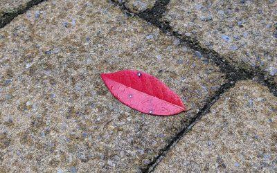 Lippen op beton