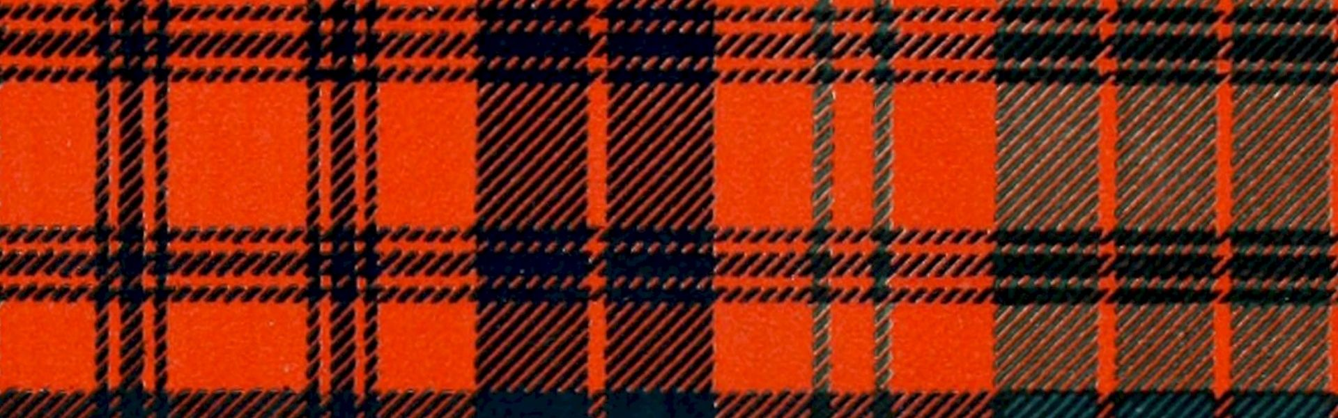 Schotse ruit bij het versje 'Mac Nuggets' van Paul Schrijft