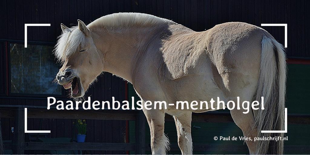 Lachend paard bij het versje Paardenbalsem-mentholgel van Paul Schrijft